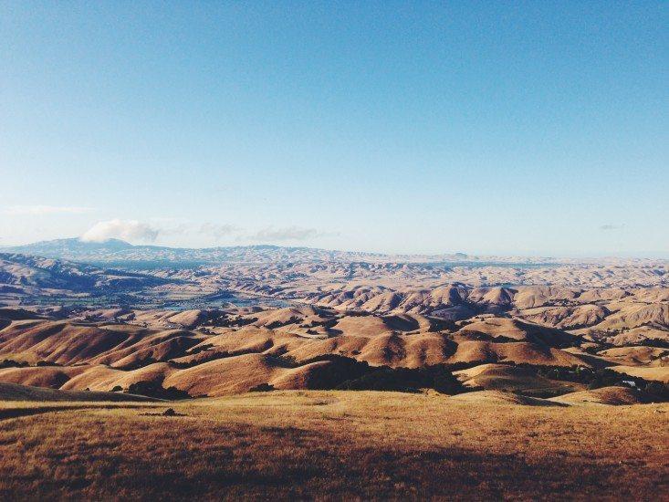 desert-drought-grass-328-733x550